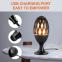 LED lampe med realistisk fakkel på spyd